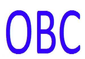 Oldenzaalse B.C. logo